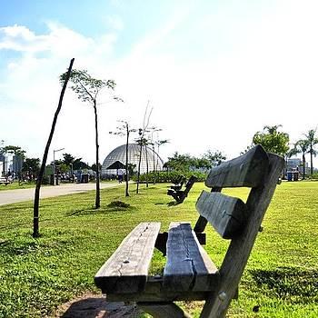 #parquevillalobos #saopaulo #brazil by Eduardo Lemos