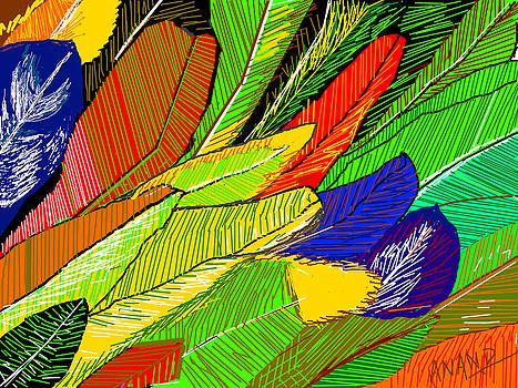 Anand Swaroop Manchiraju - PARROT FEATHERS