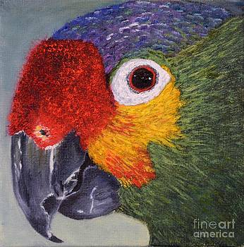 Parrot by Marsha Thornton
