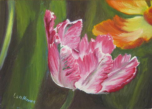 Lea Novak - Parrot Tulips Playing Together