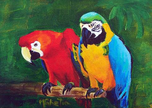 Parrots on the Lookout by Maureen Ghetia
