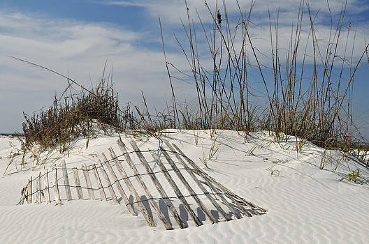 Partially Buried Fence on Florida Gulf Coast Sand Dunes by Bruce Gourley