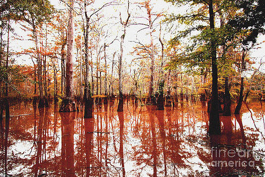 Pascagoula swamp by Russell Christie