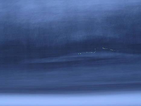 Sandy Tolman - Passenger Window - 4024