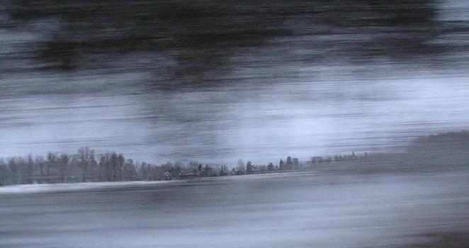 Sandy Tolman - Passenger Window - 3958