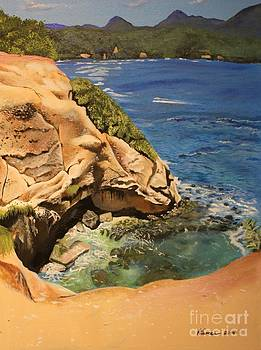 Passion Cove Red Rock by Kelvin James