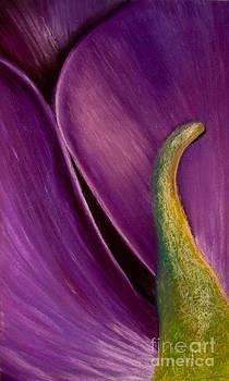 Passion by Dana Kern