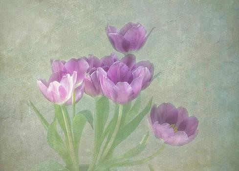 Kim Hojnacki - Passionately Purple