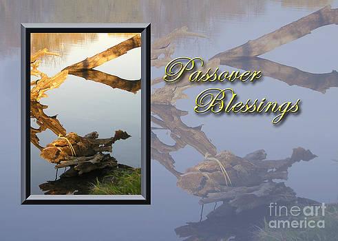 Jeanette K - Passover Blessings Fish