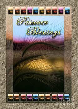 Jeanette K - Passover Blessings Grass Sunset