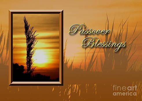 Jeanette K - Passover Blessings Sunset