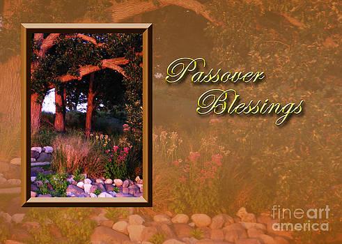 Jeanette K - Passover Blessings Woods