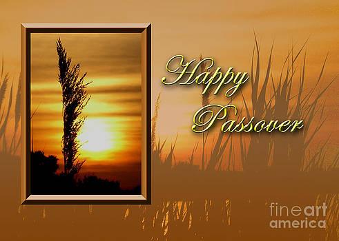 Jeanette K - Passover Sunset