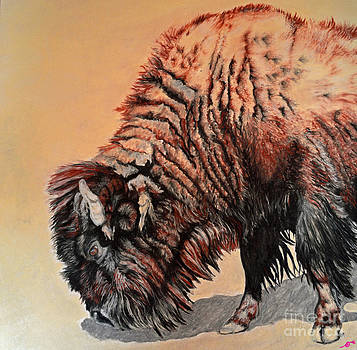 Pastel Buffalo by Ann Marie Chaffin