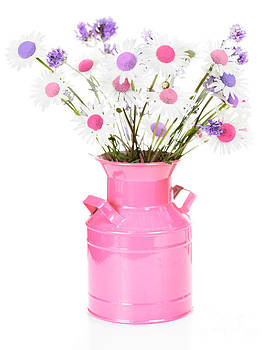 Jo Ann Snover - Pastel center daisies