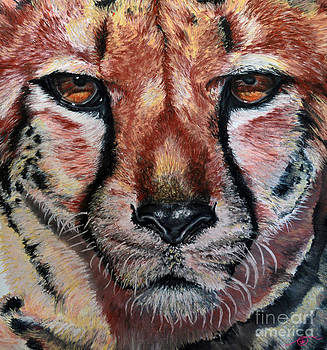 Pastel Cheetah by Ann Marie Chaffin