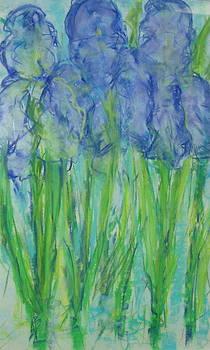 Pastel Irises by Phoenix Simpson
