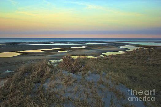 Amazing Jules - Pastel Sunset