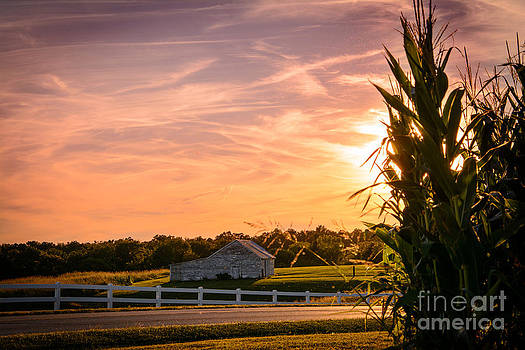 Pastel Sunset at the Farm by Mary Licanin