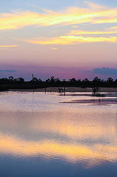 Pastels At Dusk by Lesley Brindley