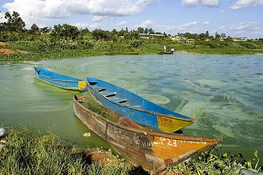 pastoral Lake Victoria uganda Africa by Sarit Saliman