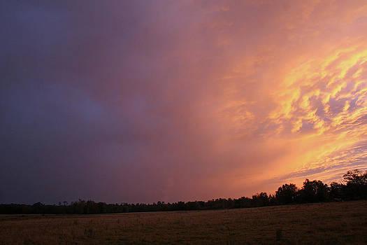 Pasture under Sunset Sky by Bob Richter