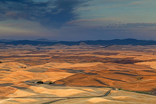 Patched Palouse by Ray Still