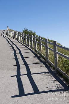BERNARD JAUBERT - Path