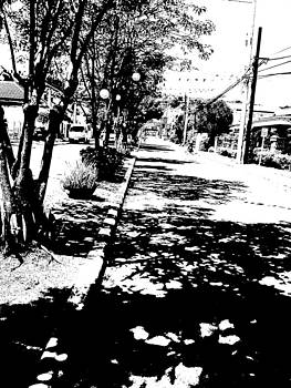 Path by Duane Blubaugh