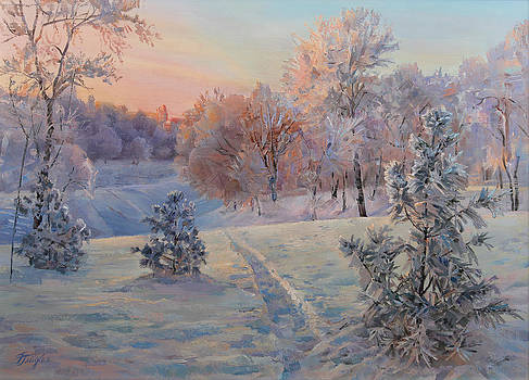 Path In Winter Forest  by Galina Gladkaya