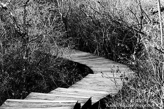 Path Least Chosen by Kristy Ollis