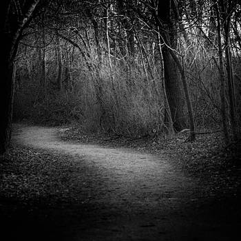 Path of Mystique by John Daly