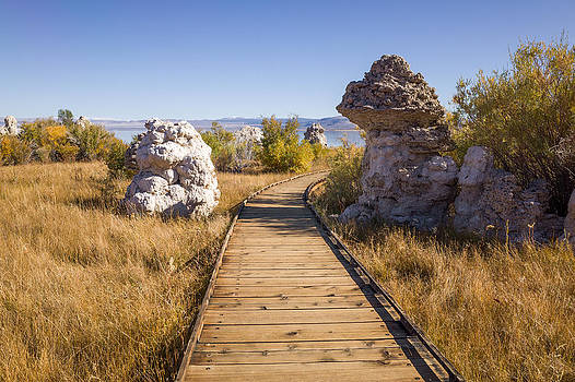 Priya Ghose - Path To Mono Lake