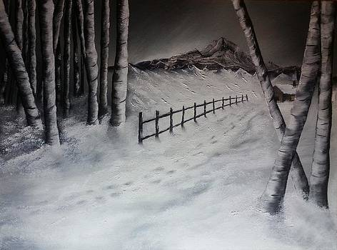 Path to Solitude by Valorie Cross