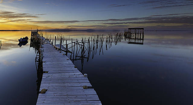 Path to Tranquility by Joao Freire