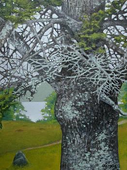 Path To Wyeth's Grave by Jason Sawtelle