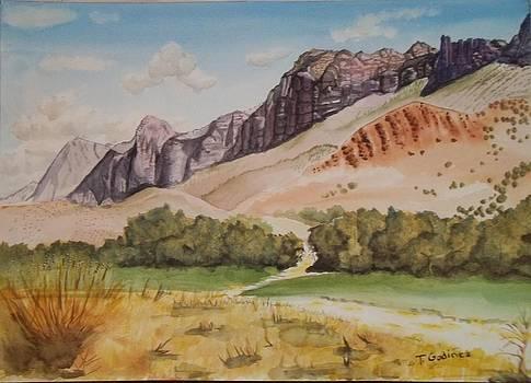 Pathway to Majesty by Terry Godinez