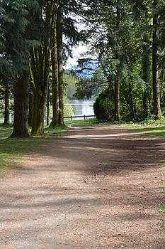 Nicki Bennett - Pathway to the Lake