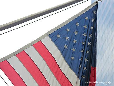 Patriot Dreams by Diana Walker