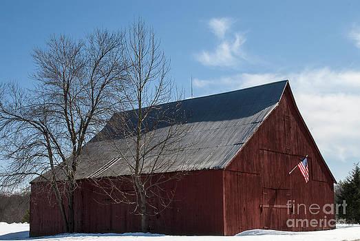 Lauren Brice - Patriotic Barn in Snow