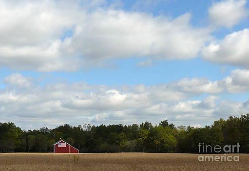 Patriotic Barn by Susan Olga Linville