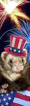 Jeanette K - Patriotic Ferret # 510