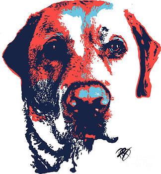 Patriotic Labrador by Rachel Barrett