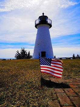 Patriotic Ned's Point by Heather Sylvia