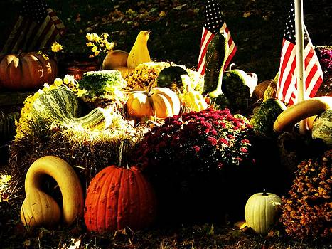 Patriotic Pumpkins by Christian Rooney
