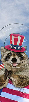 Jeanette K - Patriotic Raccoon # 527
