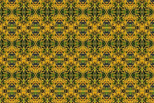 Patterns by Carolyn Ricks