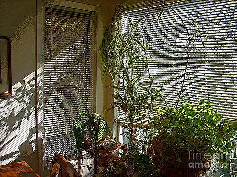 Patterns in Light Through Dining Room Window by Beebe  Barksdale-Bruner