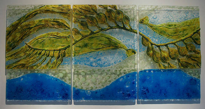 Patterns-Kelp Forest by Michelle Rial