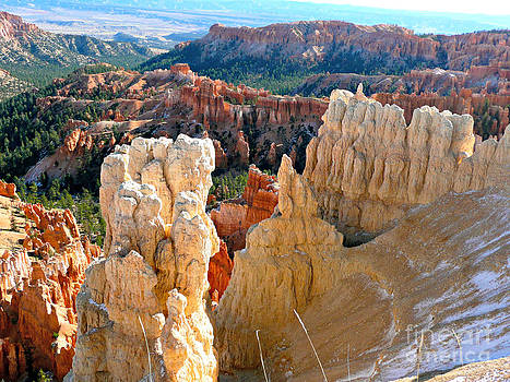 Patterns of Bryce Canyon by Rachel Gagne